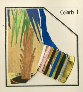 coloris-1-1