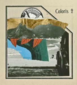 coloris-2